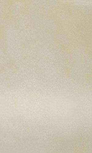 temnokremovyj-glyanec-4147