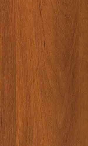 Яблоня локарно-220