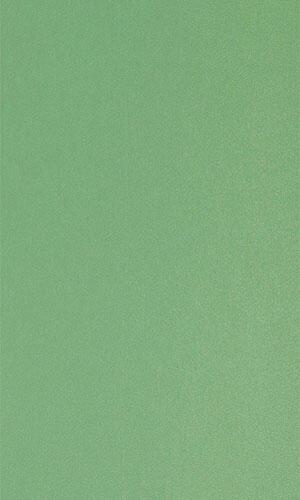 Зеленная степная 763