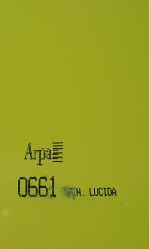 0661-fin-lucida