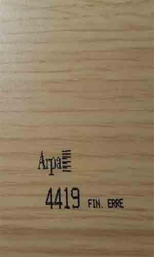 4419-fin-erre