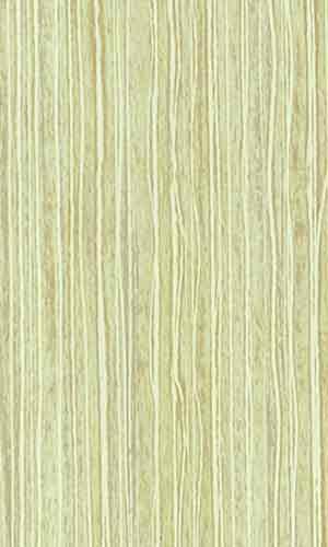 lm-0648-tropicheskij-bambuk